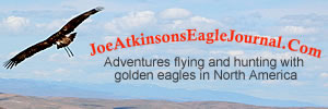 Joe Atkinsons Eagle Journal