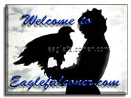 Eagle Falconer